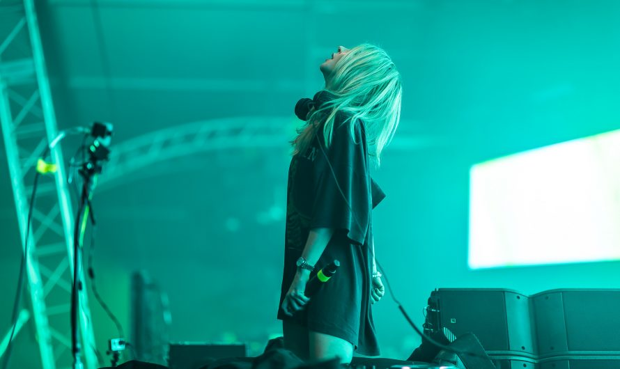 Alison Wonderland Previews New Music While Playing Animal Crossing